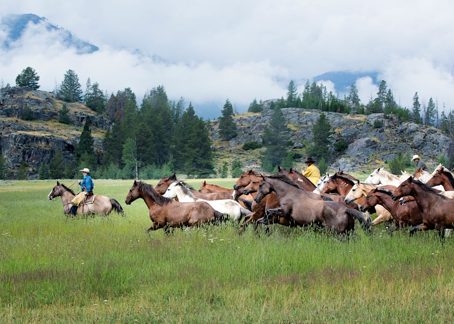 Wyoming Office Art | Sierra Luna Photography