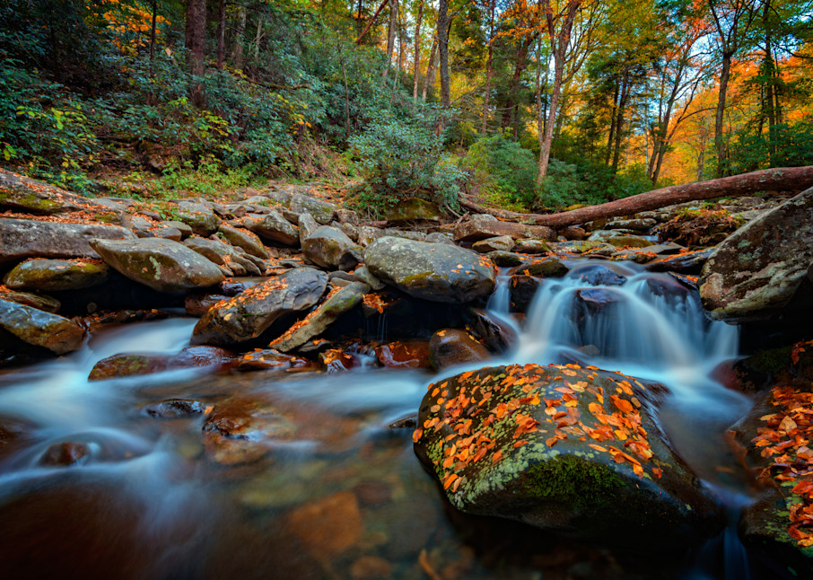Autumn on the Chimney Tops Trail by Rick Berk
