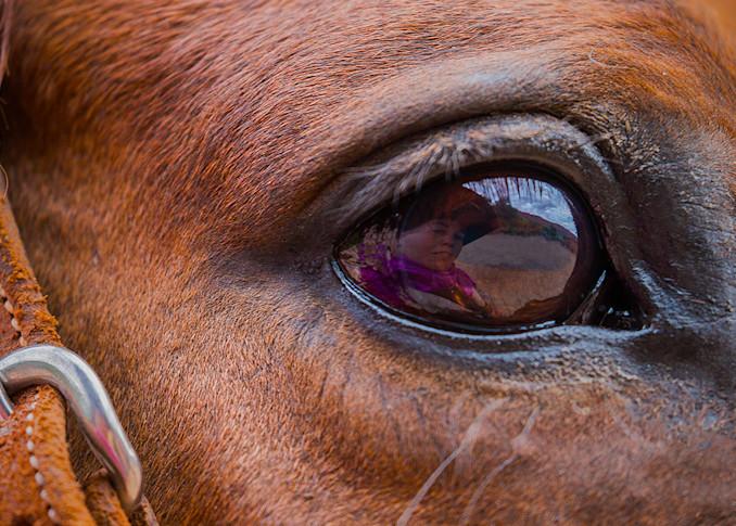 Horses - Love of my Life Photo Print