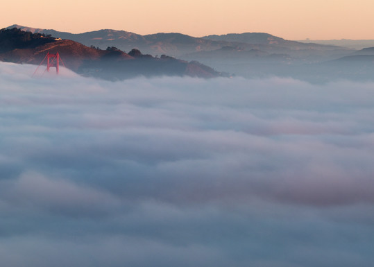 Fogdrift Quartet by Josh Kimball Photography