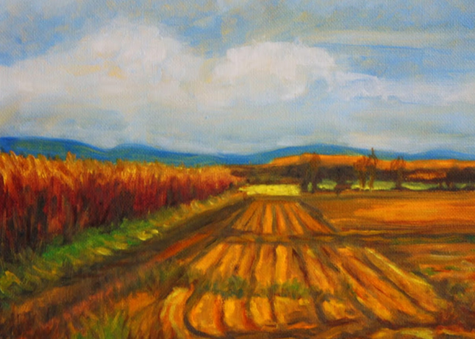 Harvest Time in the Valley Fine Art Print