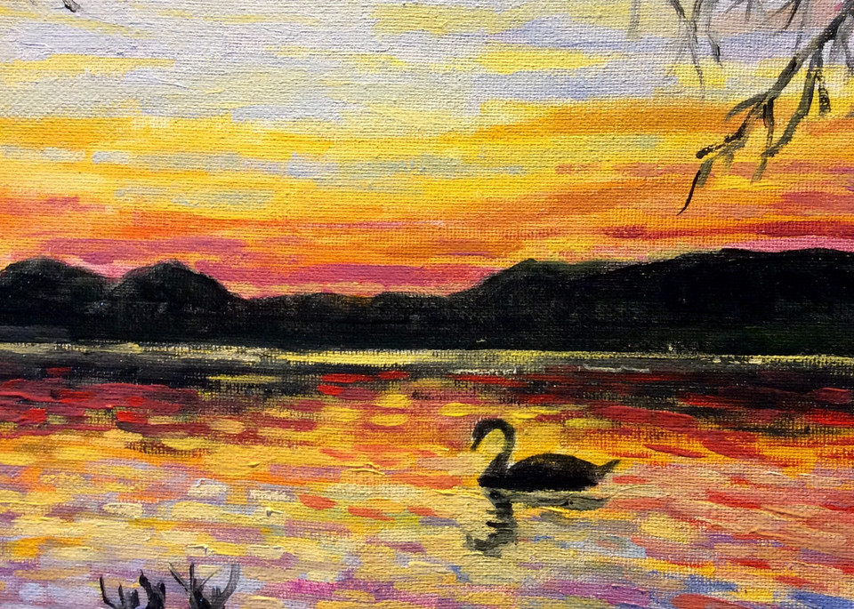 Lone swan at sunset fine art print by Hilary J. England