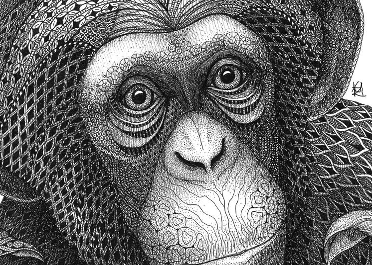 Chester Chimpanzee
