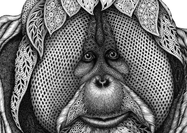 Soulful Encounter (Orangutan)