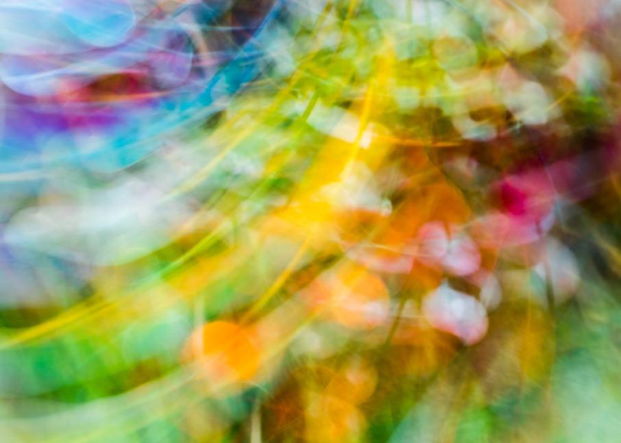 Polychrome Photography Art   allysonmagda