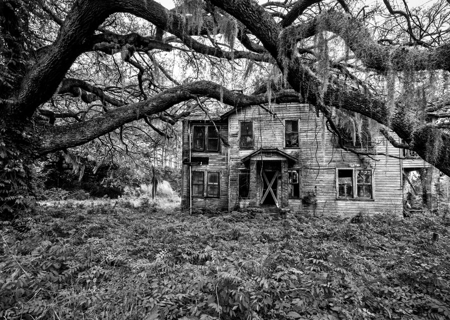 Old South memories plantation home photography