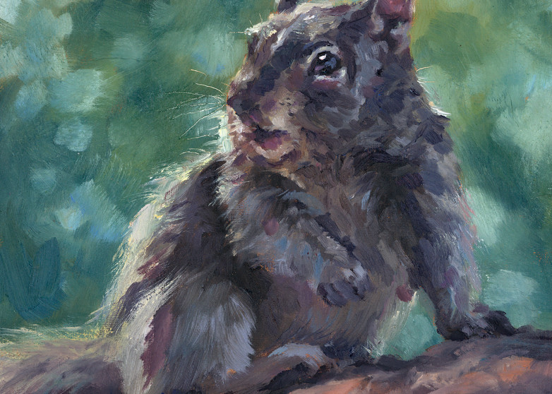 Mr Buschls is a small oil painting by Ans Taylor. Order canvas prints or giclee on paper and wood.