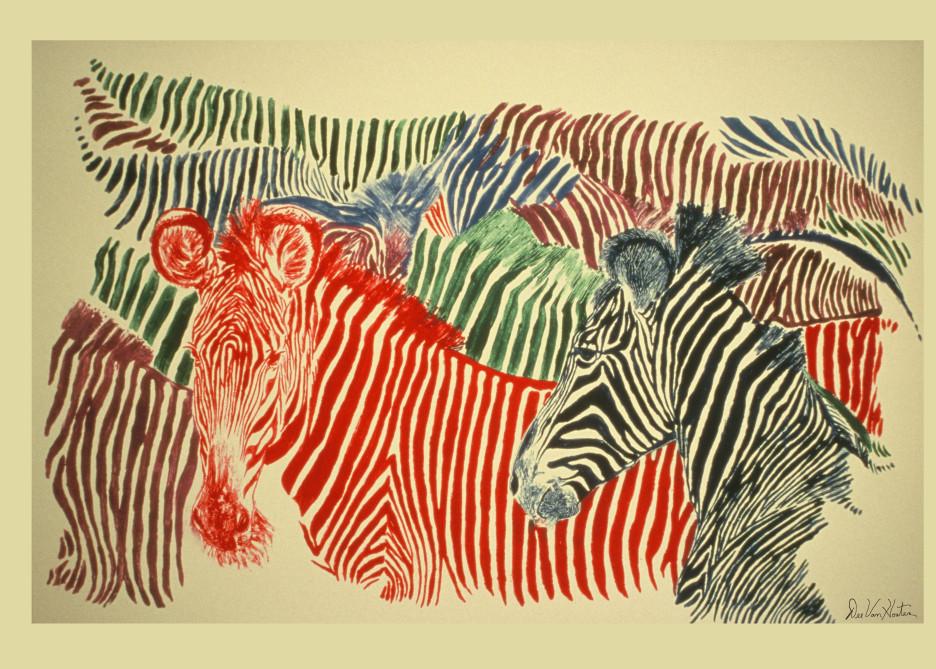 Zebras Monotype Giclee Art Prints by Dee Van Houten