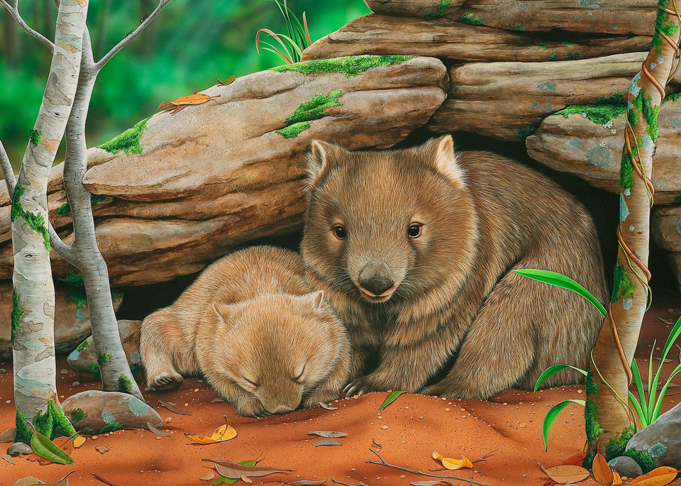 Someone To Watch Over Me - Mother And Baby Common Wombats Natalie | Jane Parker | Australian Native Wildlife