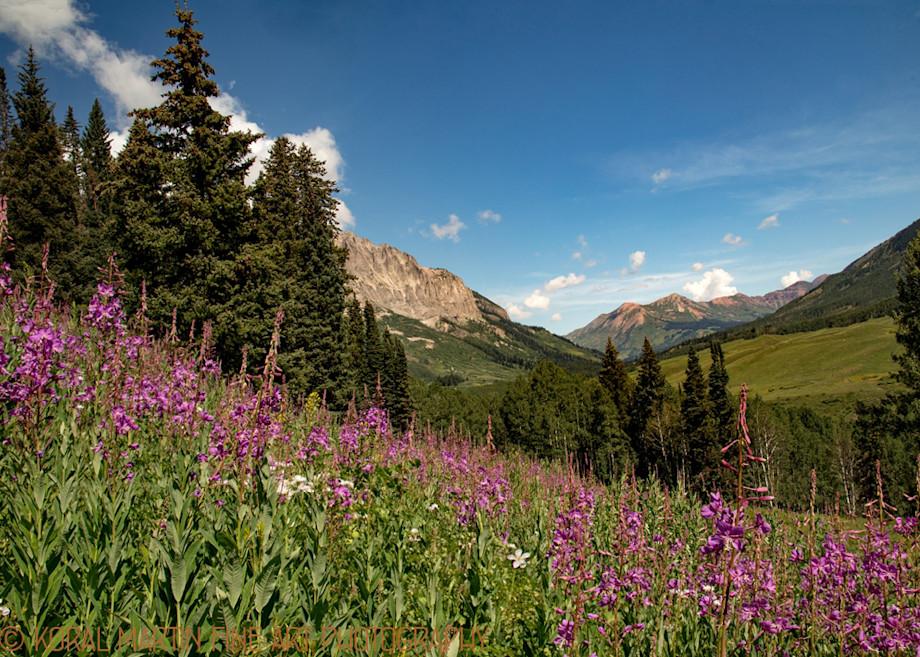 Firey View - Million Dollar Highway Photograph | Colorado  Photography |  Koral Martin Fine Art Photography