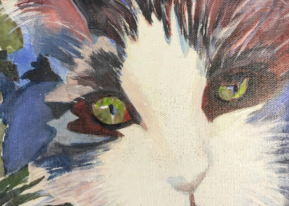 Super Kitty Art | PoroyArt