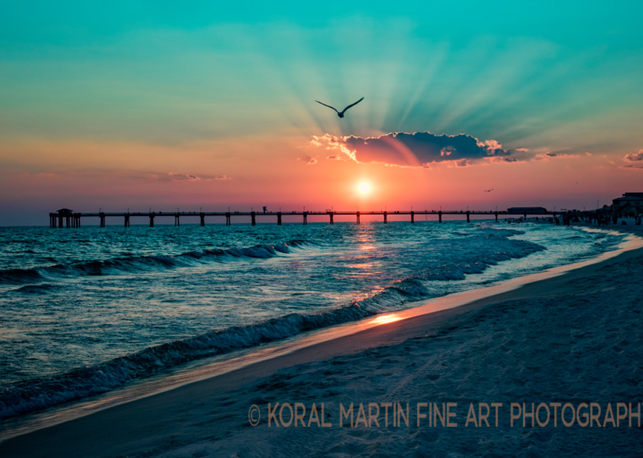 Ocean Sunsetwith  Bird Florida Photograph 1517  | Florida Photography | Koral Martin Fine Art Photography