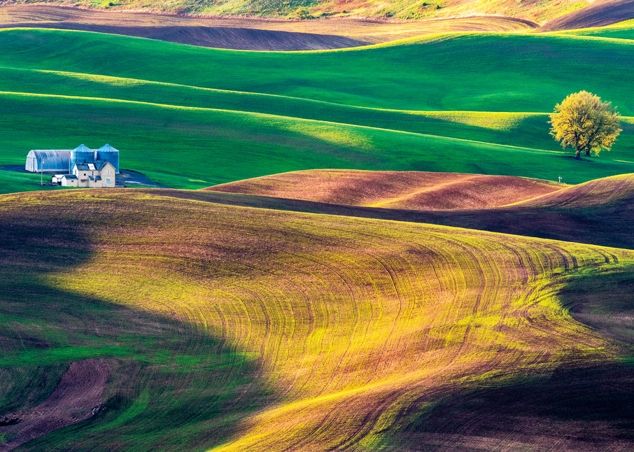 Palouse sunrise and a house on rolling hills
