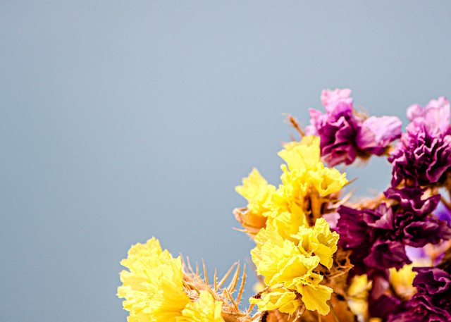 Jasa Fine Art Gallery   2319 FLOWER By Jasa
