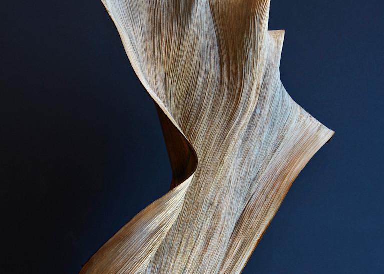 springbok - William Couture