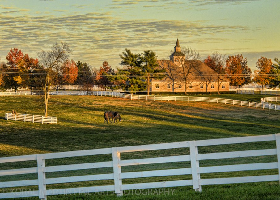 Kentucky Horse Farm Photograph 6199 V2  | Kentucky Photography | Koral Martin Fine Art Photography