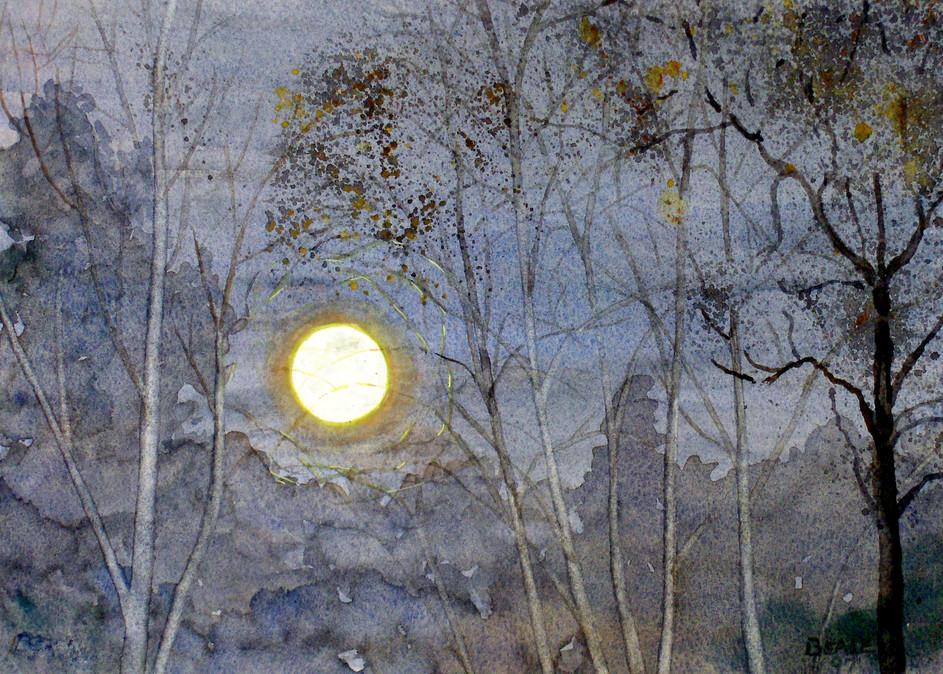 Harvest Moon Art | David Beale