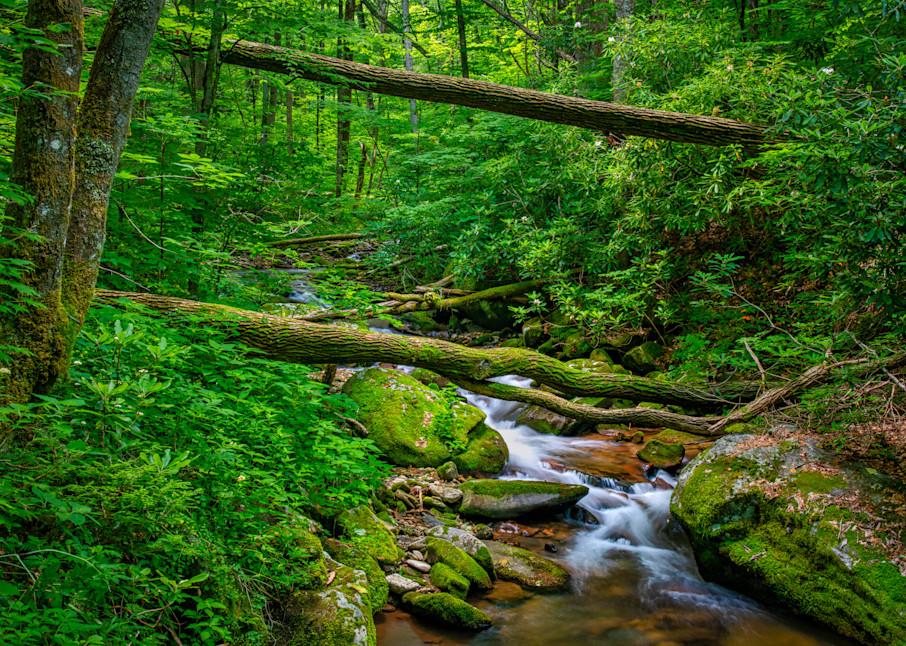 Kimsey Creek - Nantahala Mountains photography prints