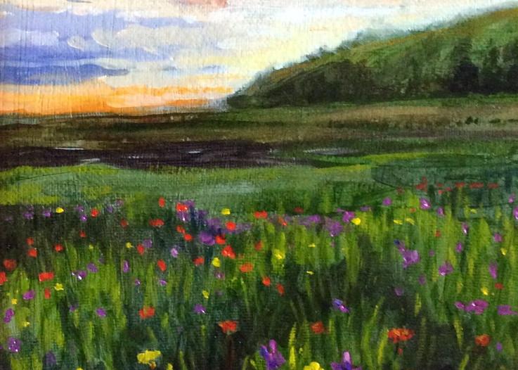 Wildflowers at sunset fine art print