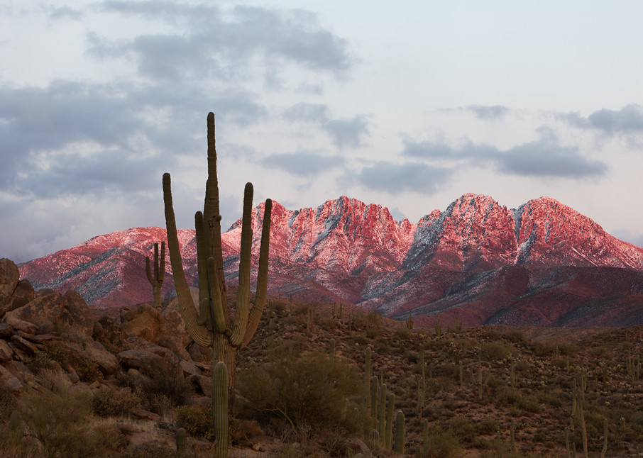 Evening at Four Peaks