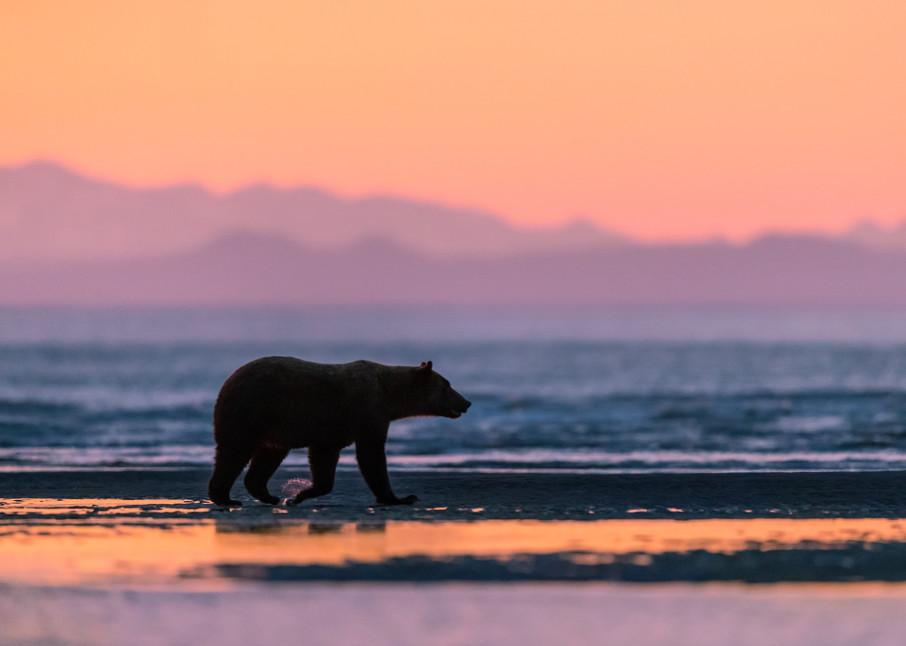 Stroll Along The Shore Photography Art | danieldauria