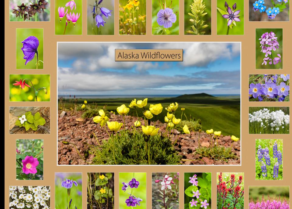 Poster of Alaska Wildflowers