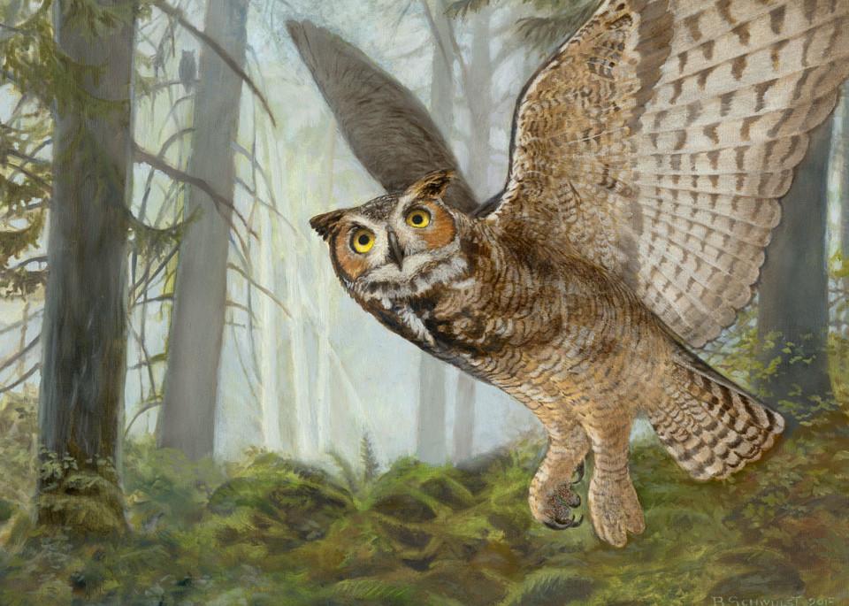 Barb Schwulst - Great Horned Owl
