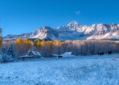 Wilson Peak In The Snow With Fall Colors Photography Art | Peter Batty Photography