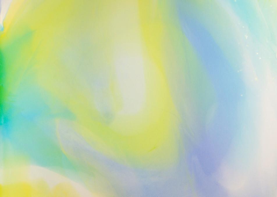Joy by Beth Shapiro, Acrylic on Plexiglas