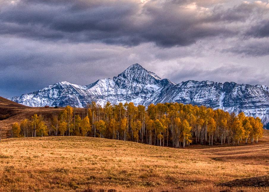 Wilson Peak With Fall Aspens Photography Art | Peter Batty Photography
