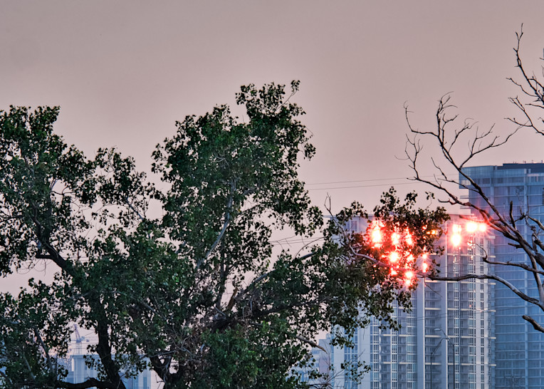 Dallas Skyline At Dawn 5 Photography Art | Drone Video TX