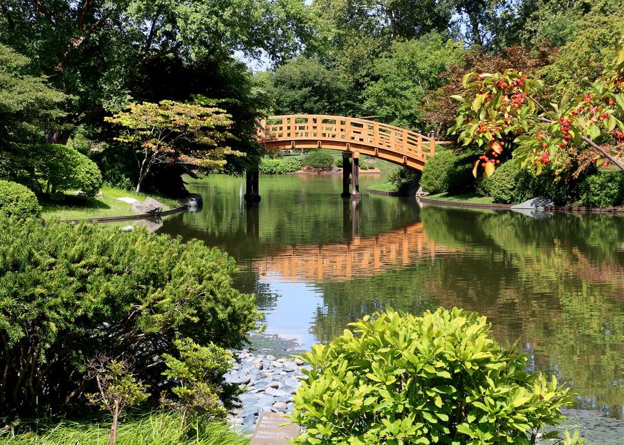 Drum Bridge At Japanese Garden, Missouri Botanical Garden Art | Moore Design Group
