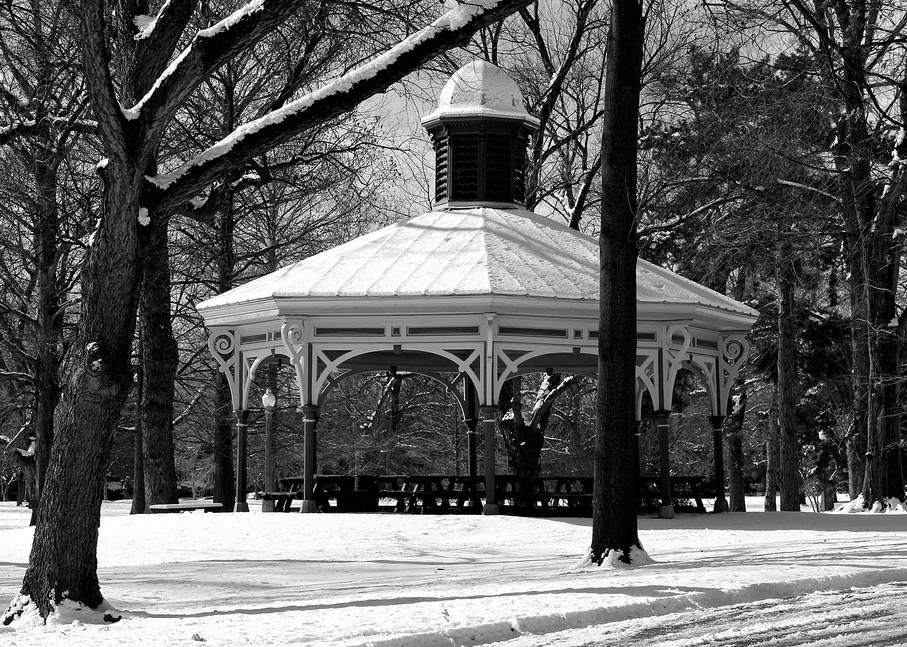 Humboldt South Pavilion In Tower Grove Park Art | Moore Design Group