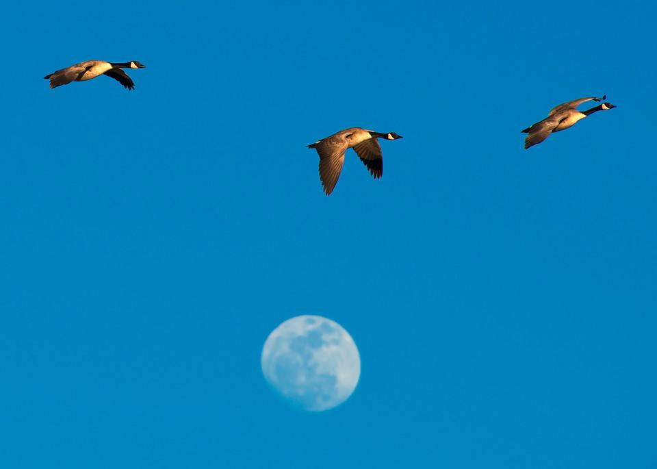 Canadas And The Moon Photography Art | Craig Primas Photography