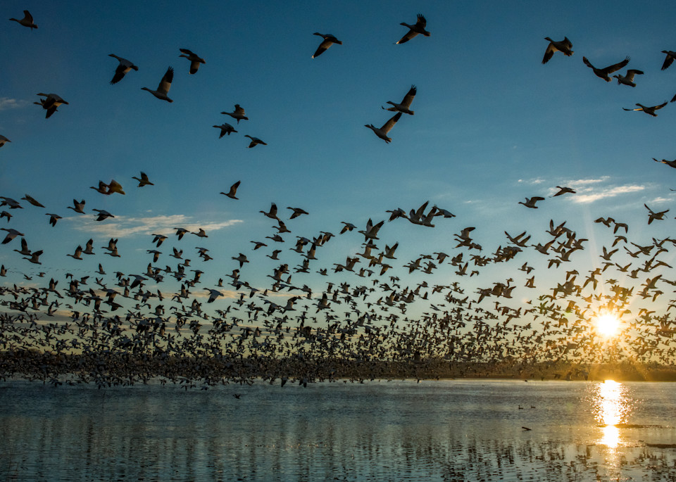 Sunrise Liftoff Photography Art | Craig Primas Photography