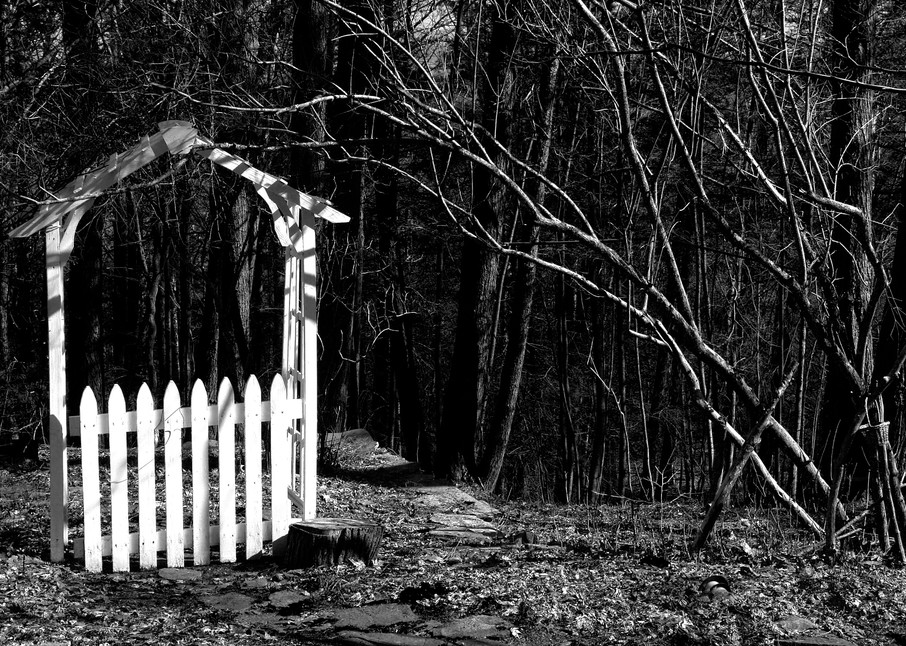 Gateway To The Wilderness Photography Art   Peter Welch