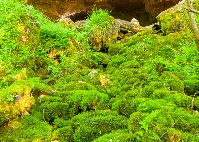 Saltpeter Cave Photography Art   Craig Primas Photography