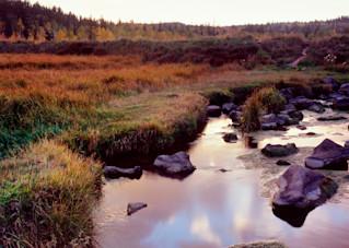 Below The Dike Photography Art | Craig Primas Photography