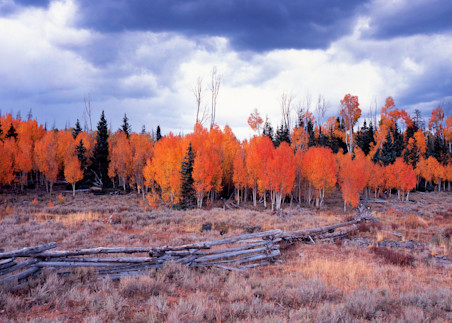 Red Desert Photography Art   Craig Primas Photography