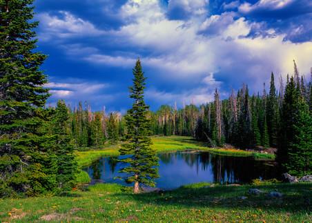 Pond Di Alpine Photography Art | Craig Primas Photography