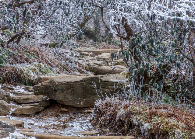 Winter Trail Art   Red Rock Photography
