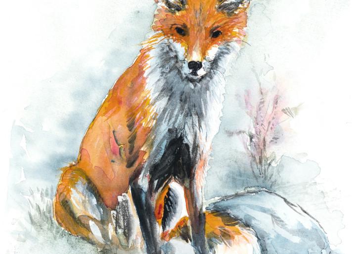Evening Fox Art | Debra Bruner Studio