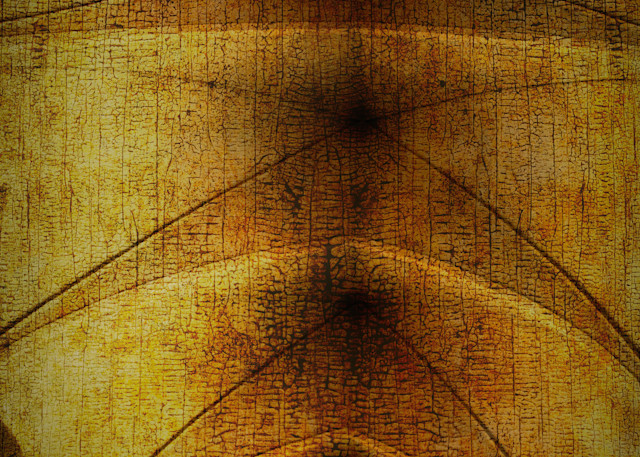 Arched Sanctuary Photography Art | Caplan Studios Vault, LLC