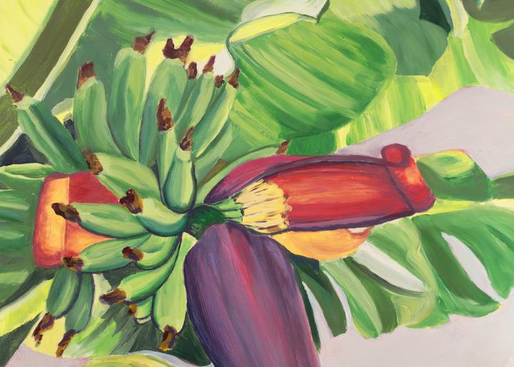 Banana Flower Art for Sale