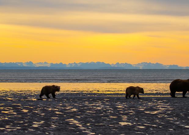 A Family At Sunrise Photography Art | danieldauria