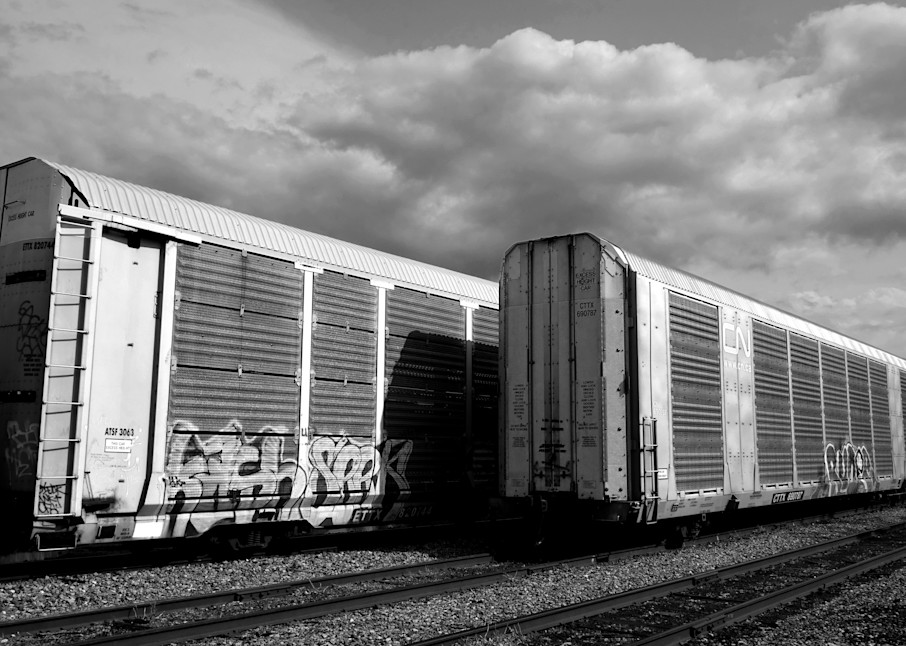 Cattle Cars Photography Art | Peter Welch