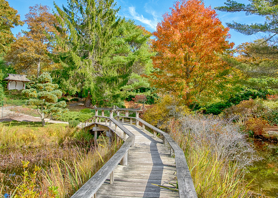 Mytoi Fall Walkway Art | Michael Blanchard Inspirational Photography - Crossroads Gallery
