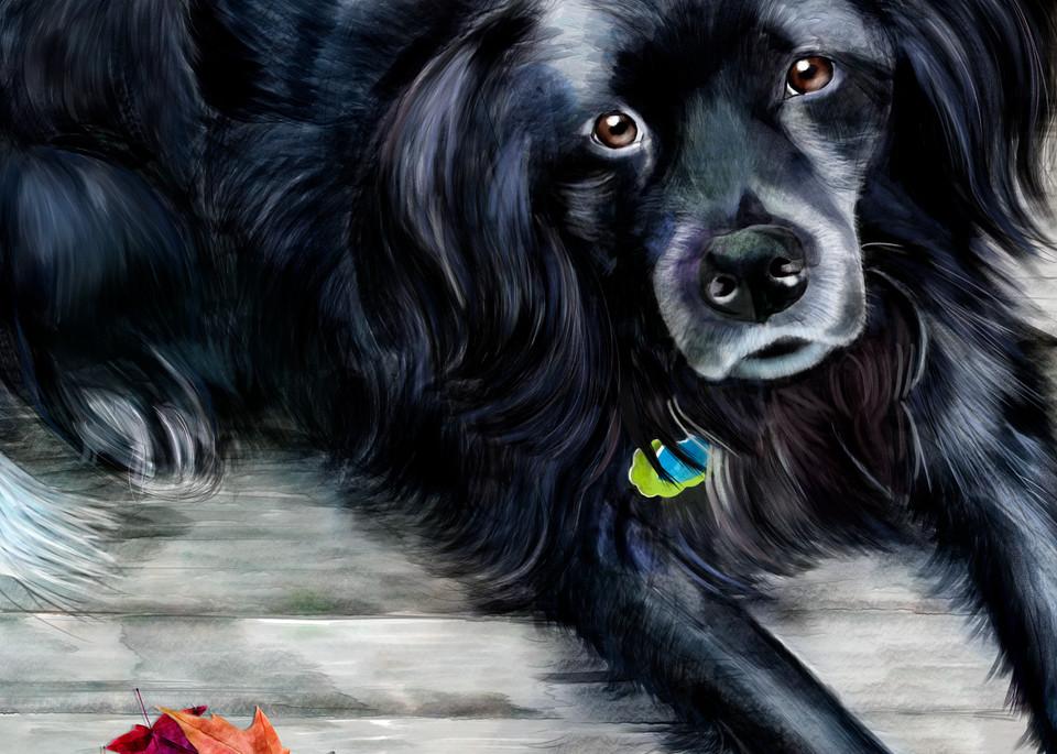 Kinsey Looking Up Art | Pendragon Art Studios