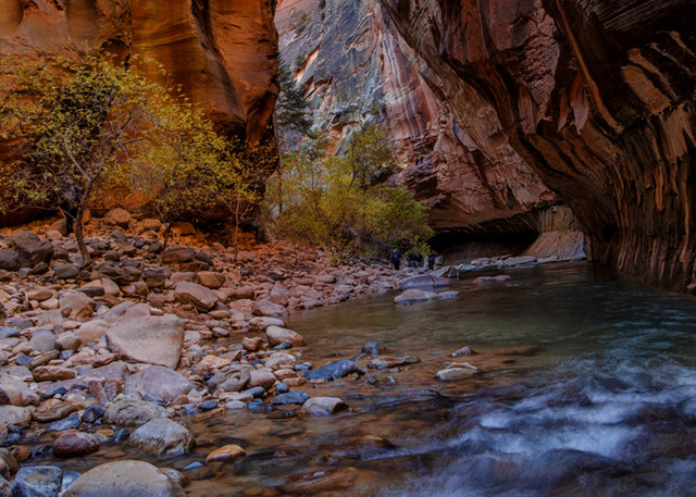 Zion Narrows Flow Photograph 2938 | Zion Narrows | Zion National Park | Canyon Photography | Koral Martin Fine Art Photography