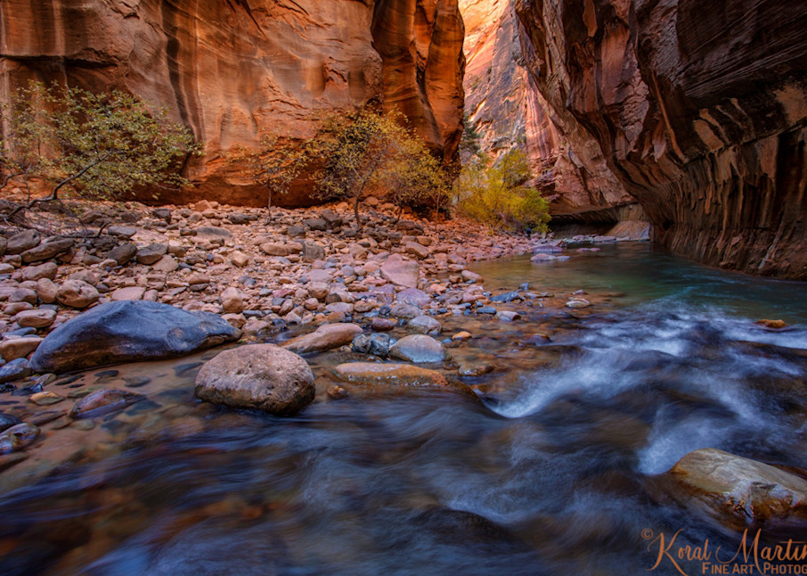 Zion Narrows Flow with Fall Trees 2956   Zion Narrows   Zion National Park   Canyon Photography   Koral Martin Fine Art Photography